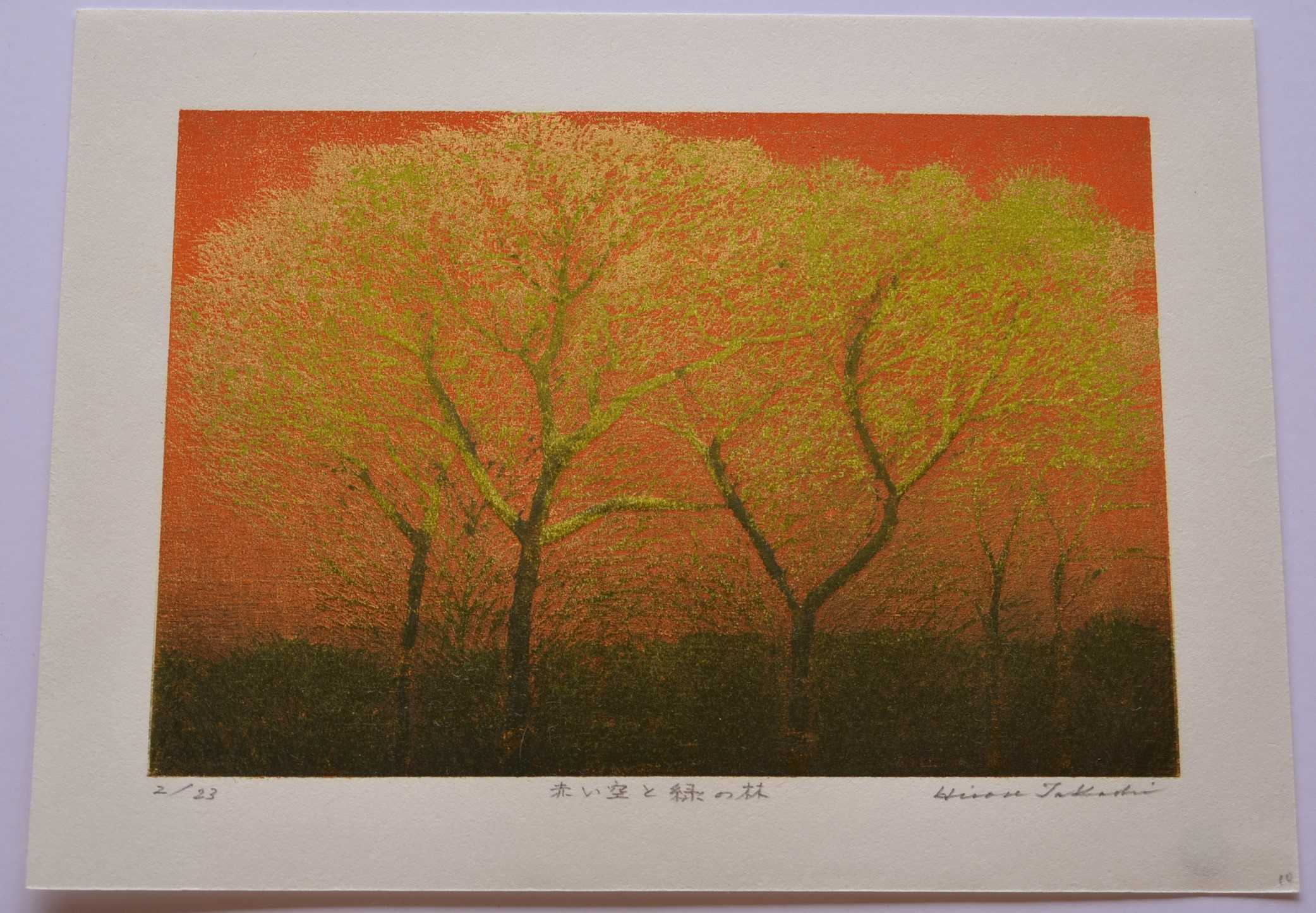 Takashi Hirose: #P4530A RED SKY AND GREEN, GREEN FOREST