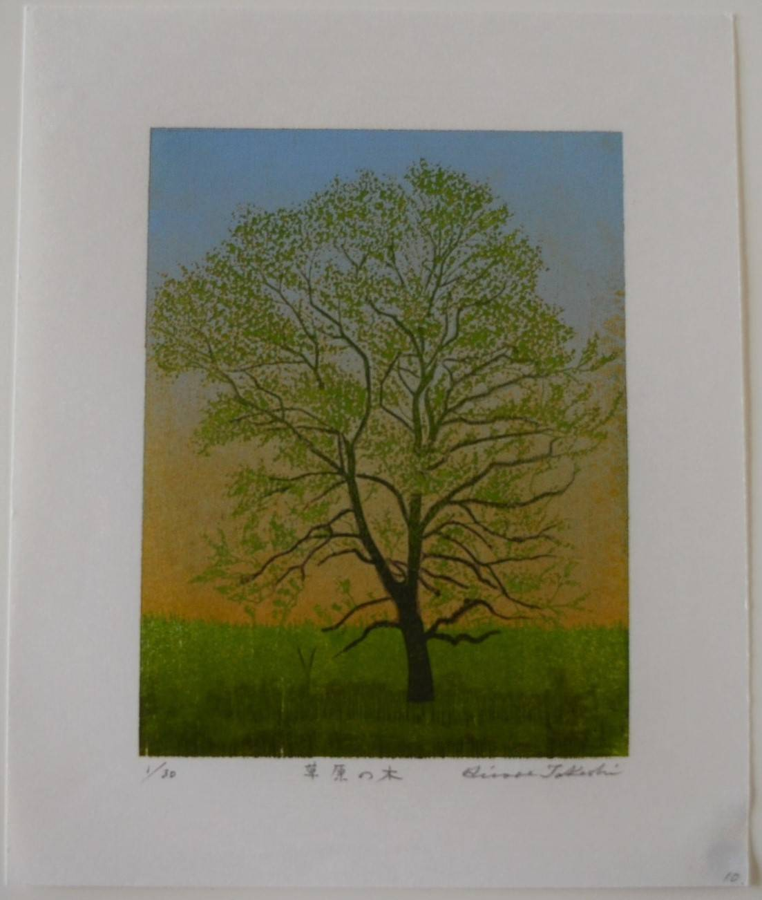 Takashi Hirose: #P4526 SOGEN NO KI - TREE IN THE FIELD
