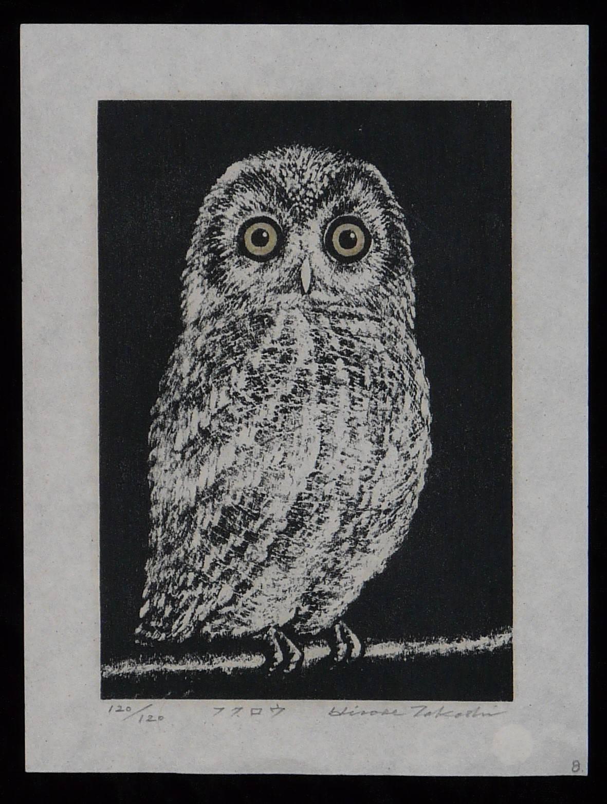 Hirose, Takashi: #P3161 OWL