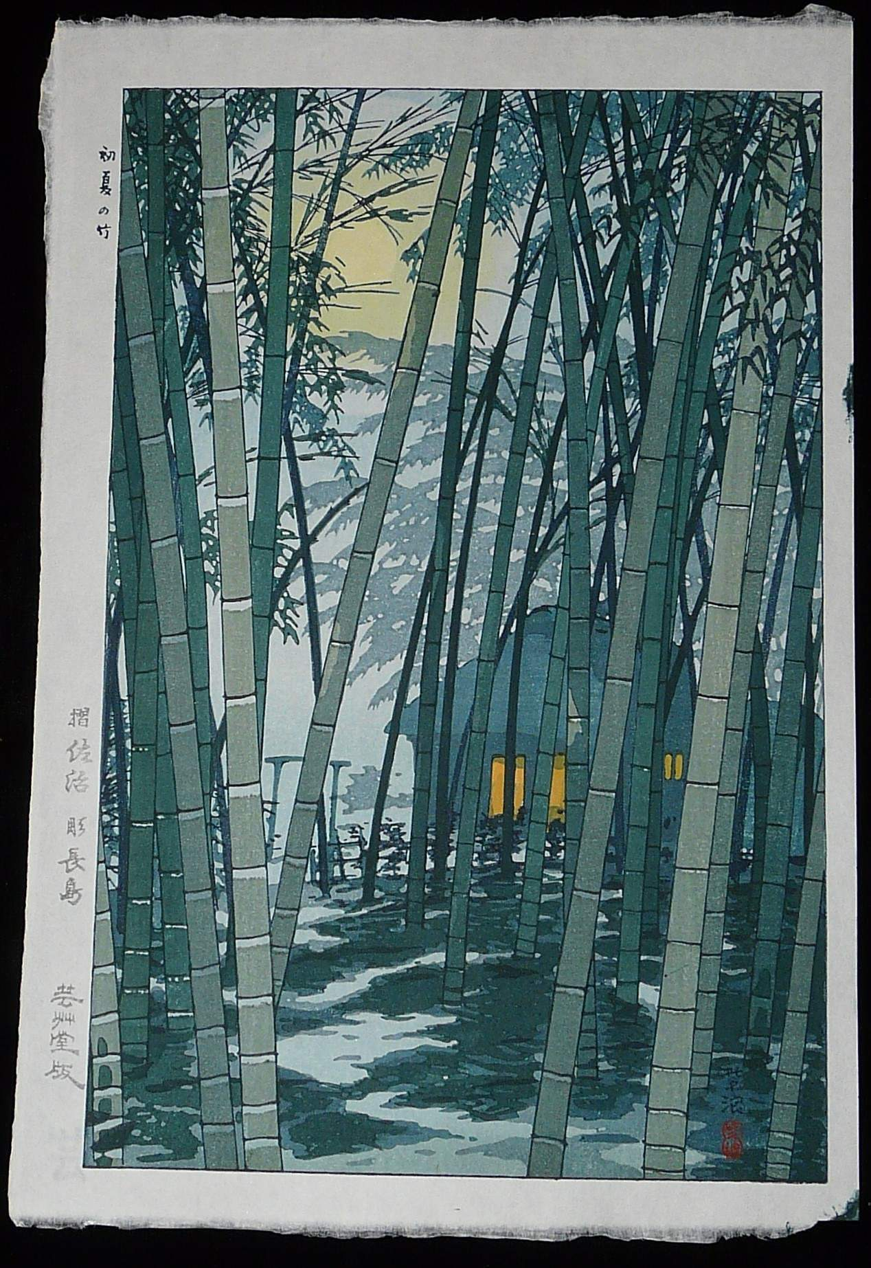 SHIRO KASAMATSU: #P3214 BAMBOO IN EARLY SUMMER