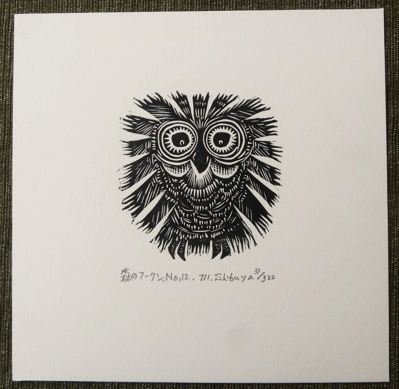 #P4285 FOREST OWL by MASAKI SHIBUYA