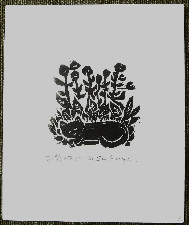 #P4293 A NICE PLACE TO SLEEP By MASAKI SHIBUYA