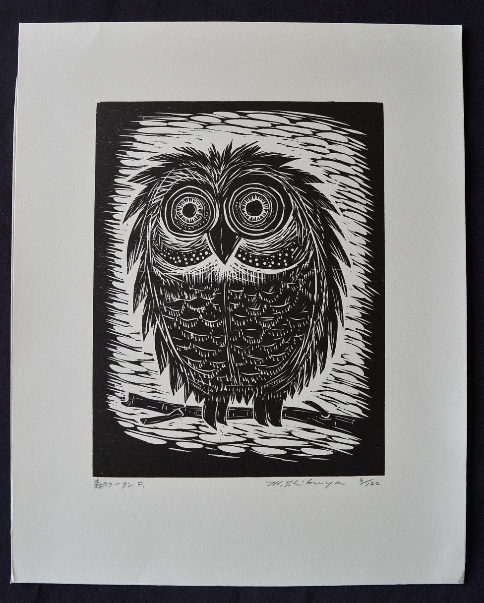 #P4522 FOREST OWL By MASAKI SHIBUYA