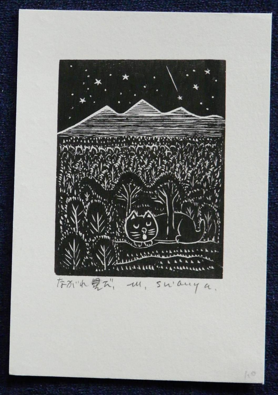 #P3471 FALLING STAR By MASAKI SHIBUYA